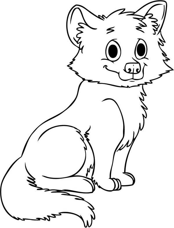 Wolf Cute Baby Wolf Coloring Page Wolf Colors Fox Coloring Page Animal Coloring Pages