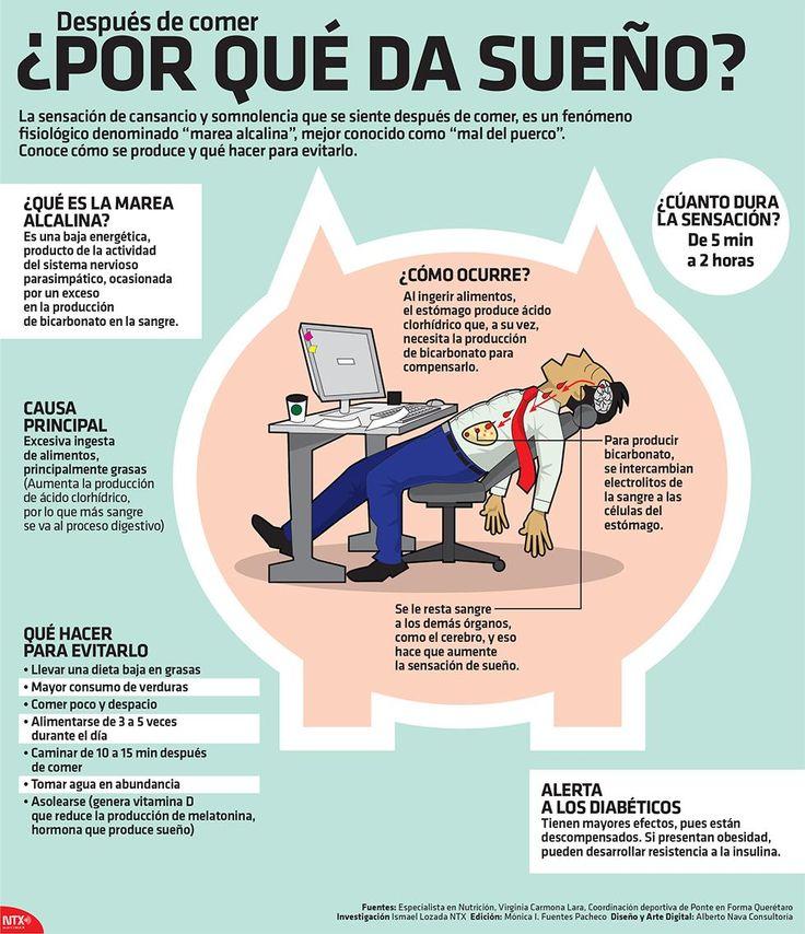 LA VERDADERA CAUSA DEL SUEÑO DESPUÉS DE COMER