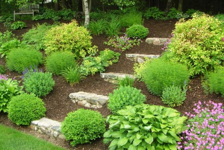 Home     Browse Yards     Yard Experts     Yard Ideas     Yard Forum     Yard Contests     My Yardshare      Yard Type     Yard Feature     Garden     Location     Size     Special  The Challenge of a Hill . . .