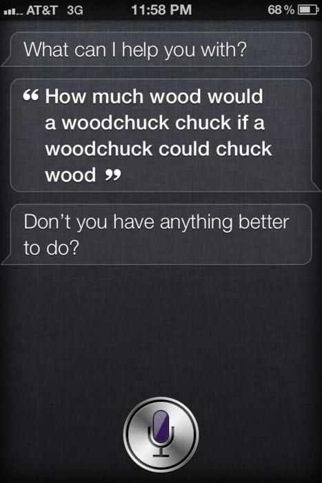 woodchuck joke