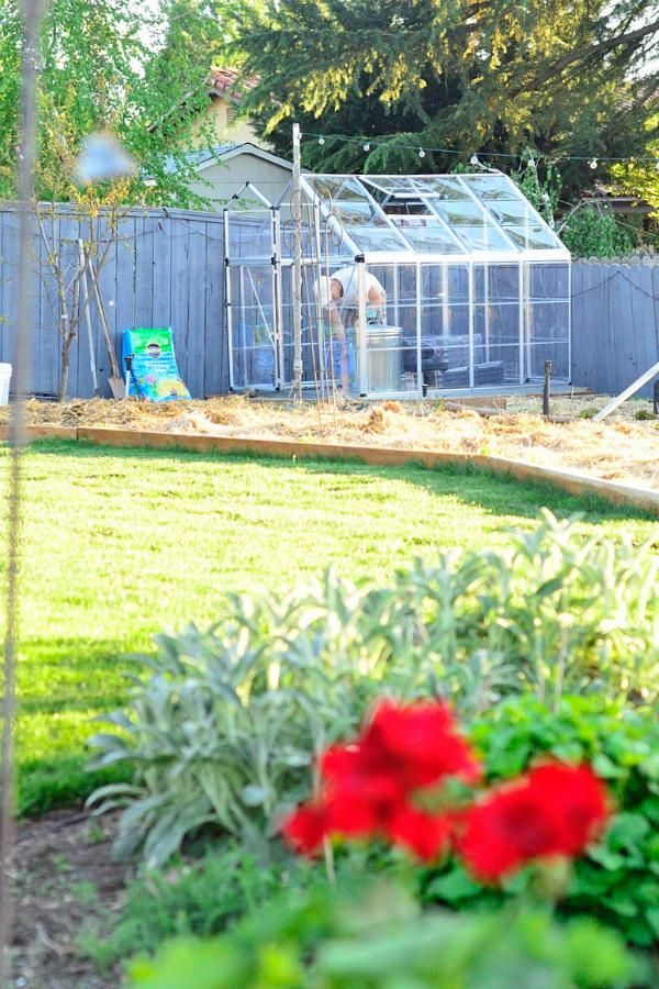 Take your gardening to the next level with a Palram Metal Polycarbonate Greenhouse! #SpringIsCalling