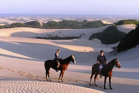 Papiesfontein beach horse rides just outside Jeffreys Bay, South Africa - A definite must-do.
