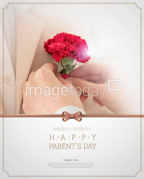 psd 5월 어버이날 기념일 감사 꽃 디자인소스 카네이션 리본 사랑 스승의날 카드 카피스페이스 합성이미지 디자인 may day anniversary gratitude thanks flower image design source ribbon carnation copyspace 이미지투데이 통로이미지 #imagetoday #tongroimages