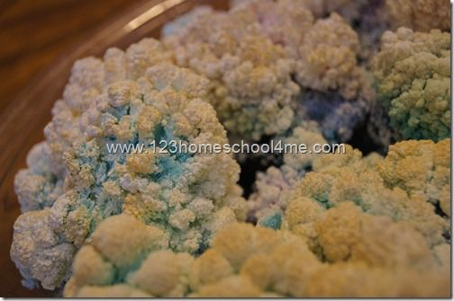 How to Grow Crystals with Charcoal, Salt, Ammonia and Bluing