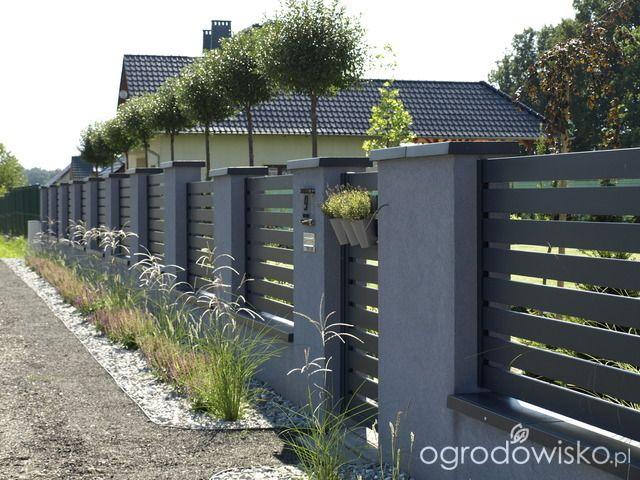 Tu ma być ogród :) - strona 1039 - Forum ogrodnicze - Ogrodowisko