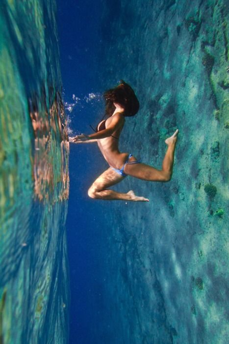 That is amazing! Great underwater Photography by Sarah Lee