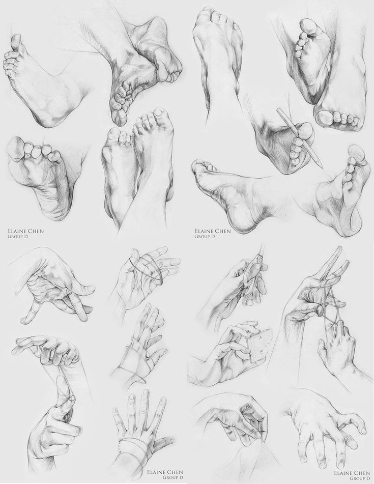 hands feets ✤ || CHARACTER DESIGN REFERENCES | Find more at https://www.facebook.com/CharacterDesignReferences if you're looking for: #line #art #character #design #model #sheet #illustration #expressions #best #concept #animation #drawing #archive #library #reference #anatomy #traditional #draw #development #artist #pose #settei #gestures #how #to #tutorial #conceptart #modelsheet #cartoon #hand