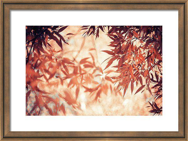 Jenny Rainbow Fine Art Photography Framed Print featuring the photograph Autumnal Foliage Frame by Jenny Rainbow