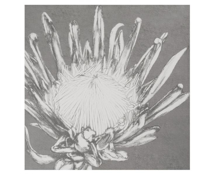 Grey Protea Wall Art - Homeware   Weylandts South Africa