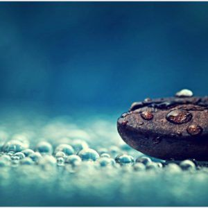 Coffee Bean And Water Drops HD Wallpaper | coffee bean and water drops hd wallpaper 1080p, coffee bean and water drops hd wallpaper desktop, coffee bean and water drops hd wallpaper hd, coffee bean and water drops hd wallpaper iphone