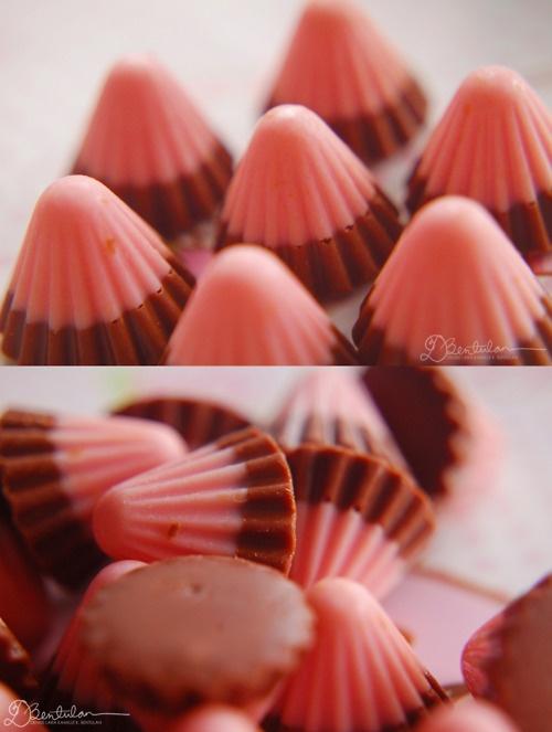 Meiji Strawberry Chocolate