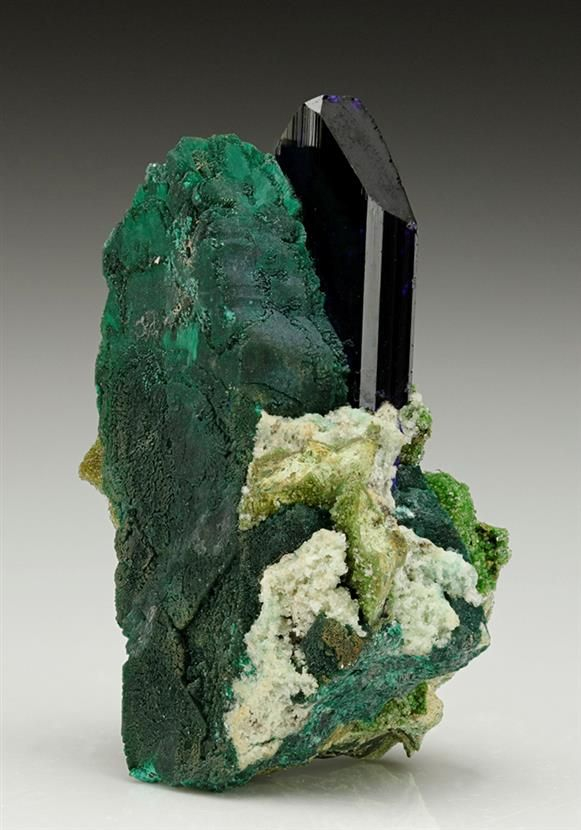 Azurite with Malachite after Azurite from Tsumeb. Two intergrown bladed crystals of Azurite, one completely replaced by mottled green Malachite, the other unaltered with a rich royal blue colour with a neon blue when backlit.