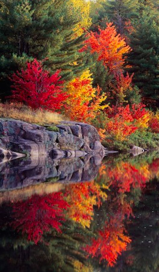 Autumn reflections at Killarney Provincial Park in central Ontario, Canada by Don Johnston