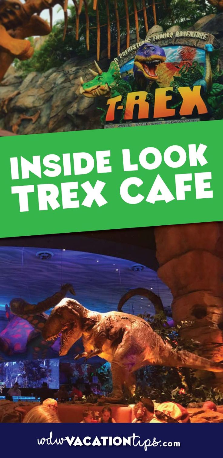 What to expect if you are planning on or thinking about eating at Trex Cafe at Disney Spring in Disney World.