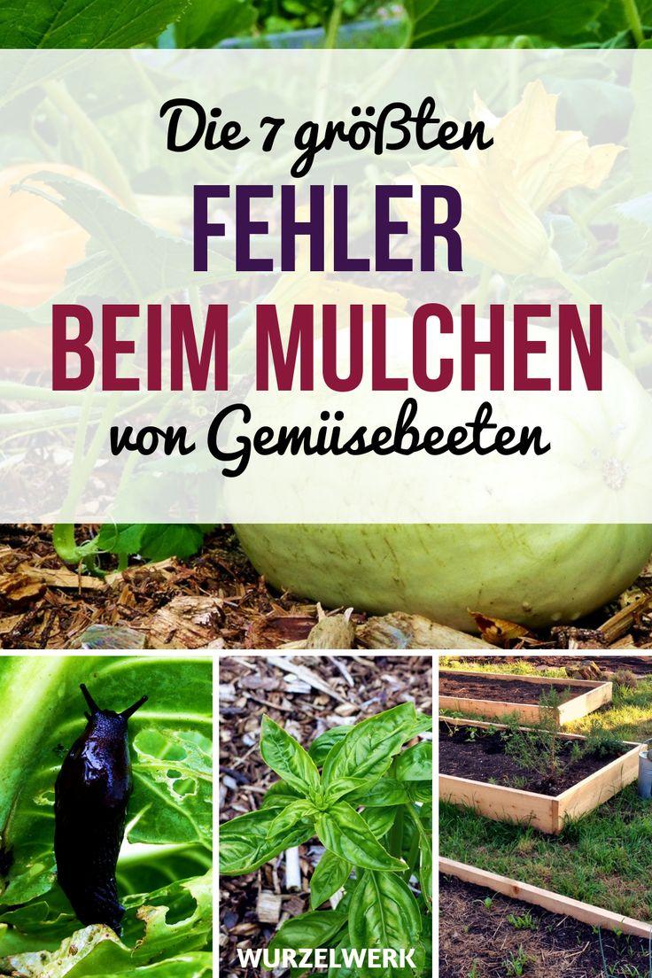 Die 7 größten Fehler beim Mulchen von Gemüsebeeten und wie man sie vermeidet …   – Garten gestalten