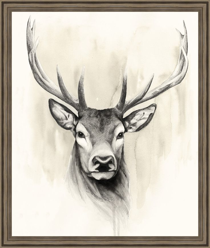 Wildlife and Lodge 'Timberland Animals I' Framed Painting Print