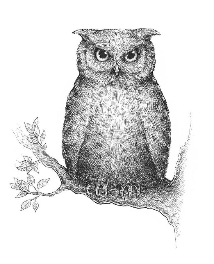 картинки сов и филинов для рисования камуфляжа растяжек