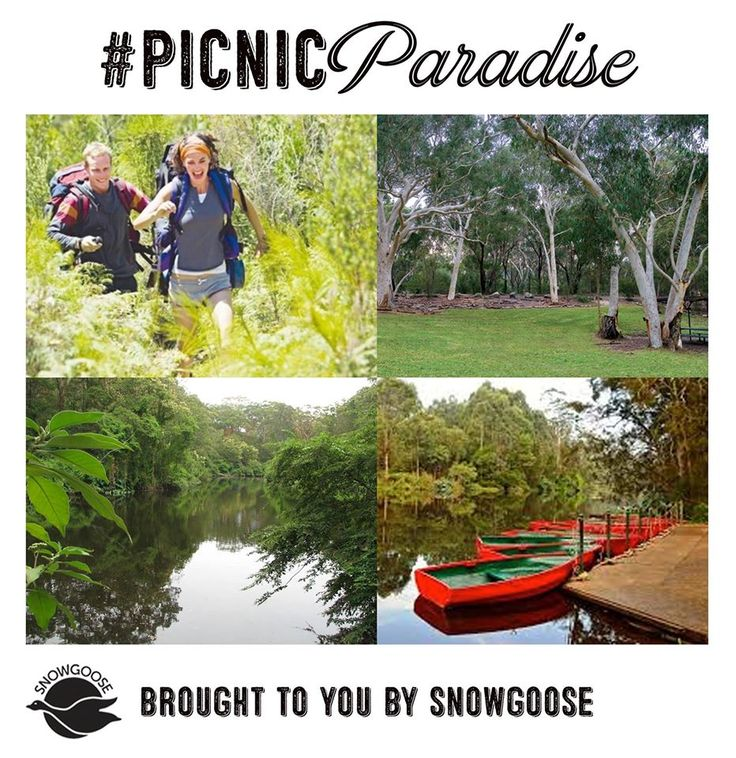 Lane Cove National Park - relaxing picnic, BBQ, walking tracks, bike tracks, boat rides, you can even stay overnight! Activity central! #SydneysBestPicnicSpots #LaneCoveNationalPark #Picnics