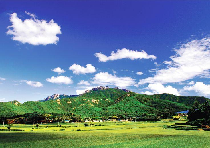 푸른 하늘, 초록 숲길, 그리고 맑은 계곡이 있는 살아있는 천혜자연, 고흥 팔영산