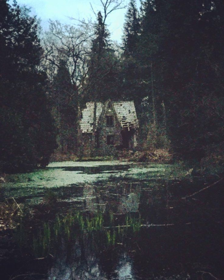 Abandoned a friend and i found this old house deep in the woods jutland denmark imgur - The jutland small house ...