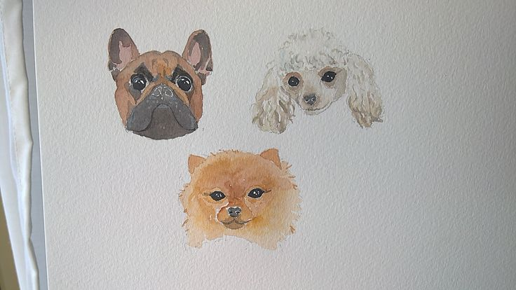 Doggie watercolor painting of a Frenchie, Poodle and Pomeranian.