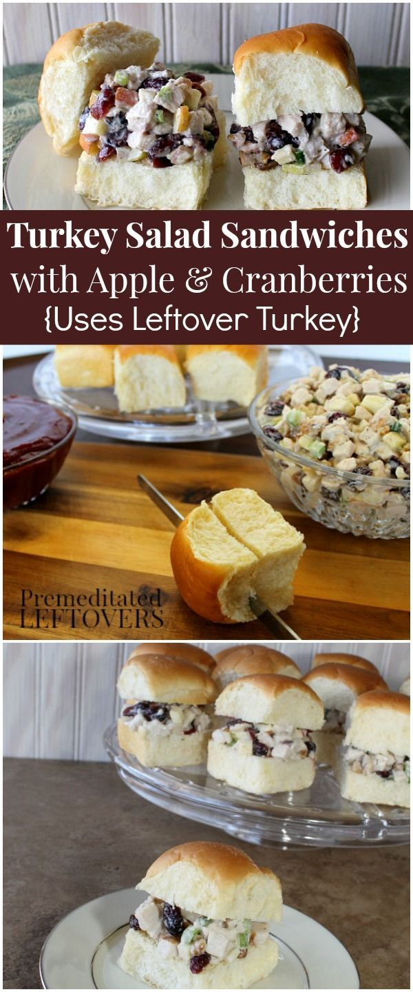 Turkey Salad Sandwiches with Apples and Cranberries Recipe - A delicious way to use up leftover turkey from Thanksgiving dinner!