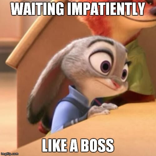 Funny Zootopia Memes : Best zootopia memes images on pinterest disney stuff