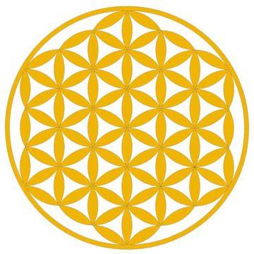 """La Flor de la Vida consiste en la superposición de varios círculos que demuestra que originalmente, toda vida se originó de una única fuente. Ya que este símbolo se usa en los productos, el agua que contiene recuerda este """"código original"""" a través de la influencia de la Flor de la Vida. Una vez más, el agua se organiza simétricamente mientras se corresponde a su estructura sencilla, el hexágono. ¡Y esta misma forma hexagonal original se encuentra en la Flor de la Vida!"""