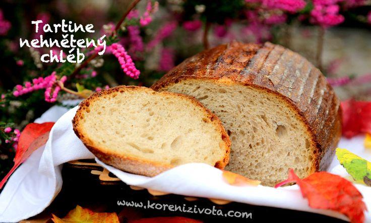 Tartine nehnětený chleba