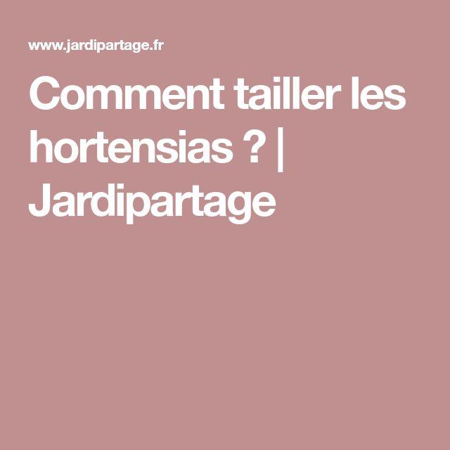 Comment tailler les hortensias ? | Jardipartage