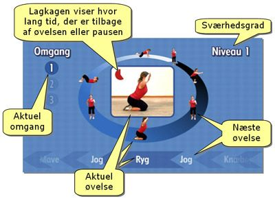 Save time and do home based circle training - various levels, very effective