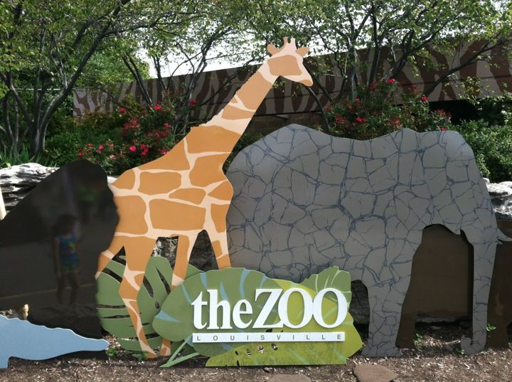 Louisville Zoo. Go wild among the animals. Local fun for the whole family.