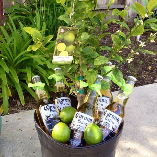 best gift ever - coronas and lime tree... LET THE WINNING PAIR FIND YOUR DREAM HOME 732.207.8154 www.monmouthhomesforsale.com
