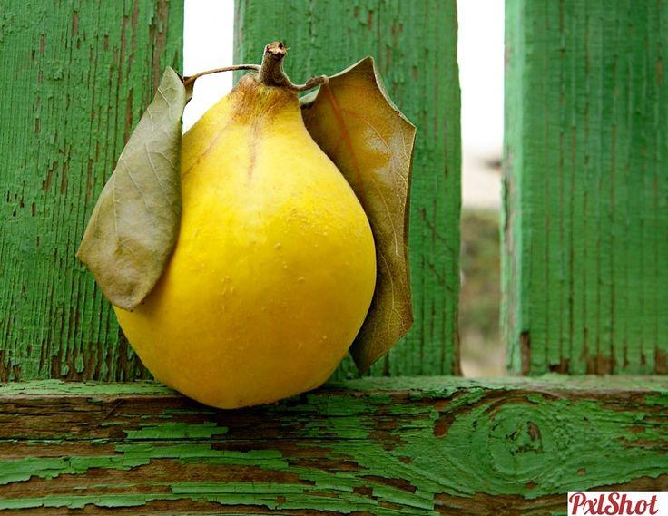 Din amintiri | Un singur fruct sau leguma - PxlShot.ro