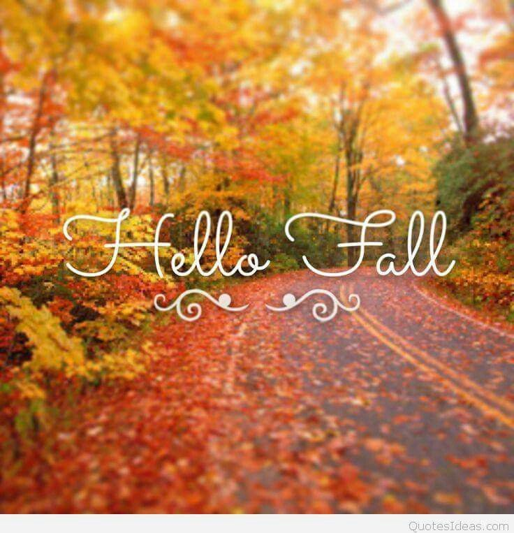 Hello Fall Quotes Quote Autumn Hello Fall Hello Autumn Welcome Autumn