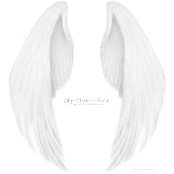 Angel Wings PNG submited images | Pic2Fly ❤ liked on Polyvore featuring wings, backgrounds, fillers, art, accessories and scenery