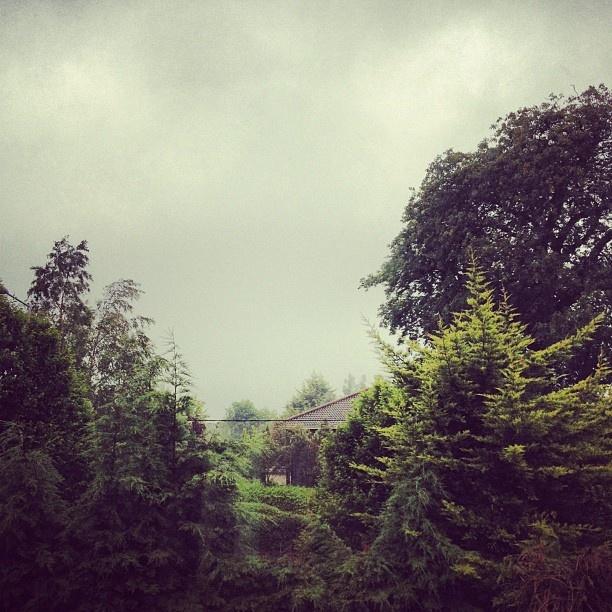 Dublin / Rain