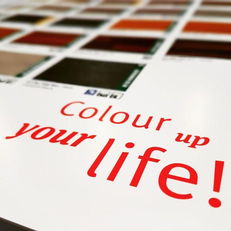 Colour Up Your Life! Scopri le bellissim linee di pavimenti in legno laminato Egger su PavimentiLaminati.com