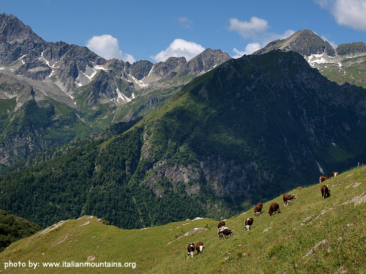 Valsesia, magnificent place suspended in time, in the Italian Alps, between grazing cows, old pastures, and unusual paths