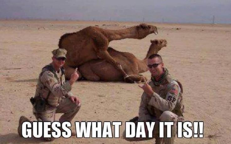 Guess what day it is!!!