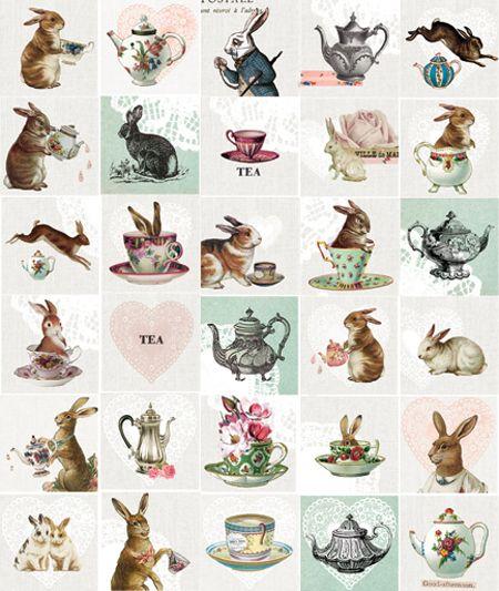 rabbits: Teas Time, Teas Cups, Alice In Wonderland, Vintage Girls, Bunnies, Rabbit Teapots Vintage, Teas Art, Teacups, Teas Parties