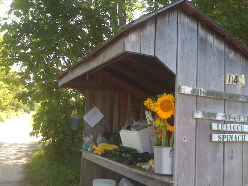 I love buying flowers and produce from a road side farm stand!