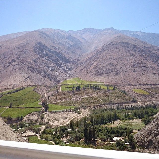 Valle Del Elqui en La Serena, Coquimbo Known for production of wine