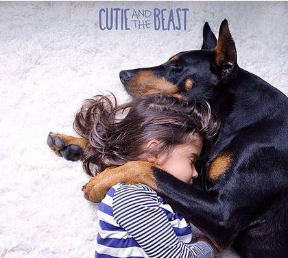 Nunca tengas un perro Doberman (peligrosos con los niños) - Taringa!