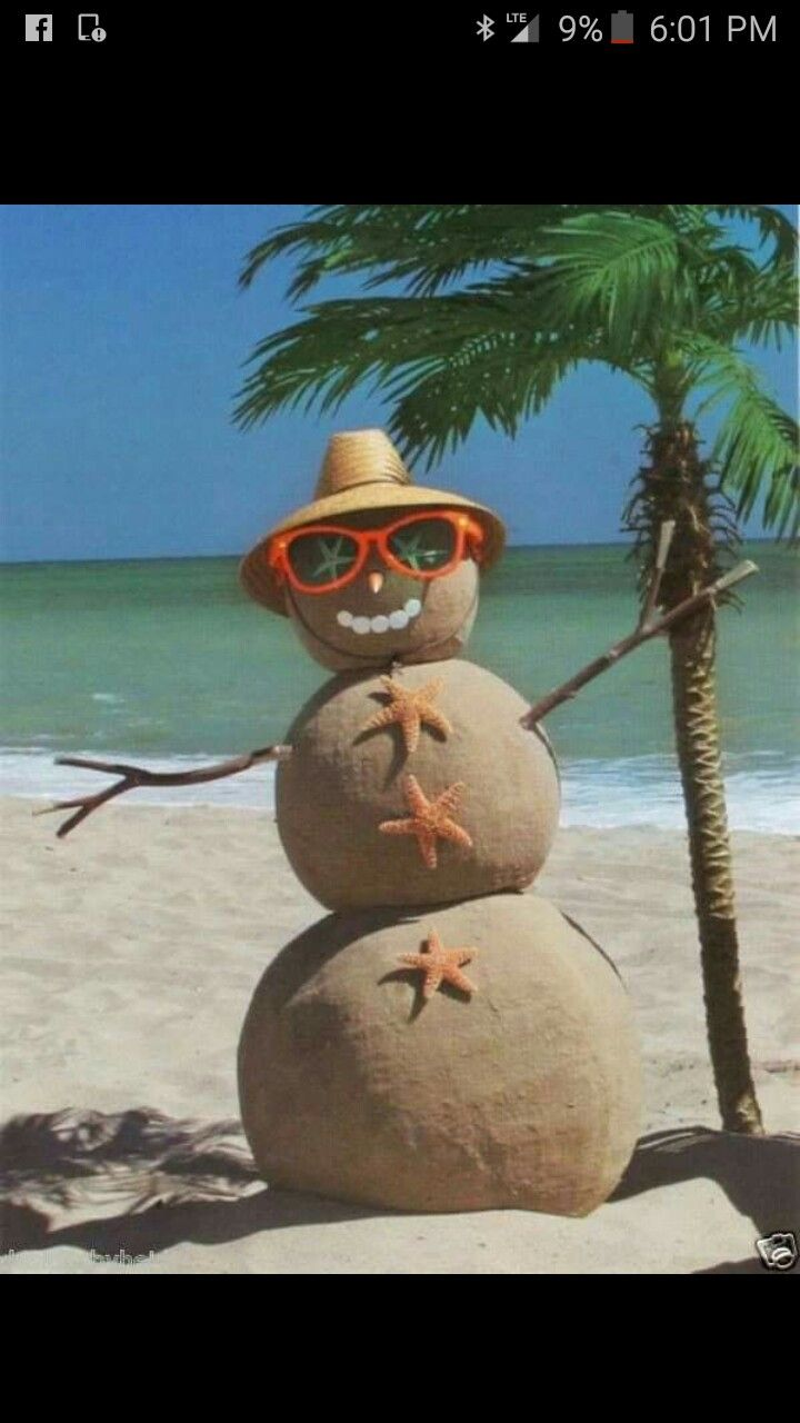 313 best A very beachy christmas at our home images on Pinterest ...