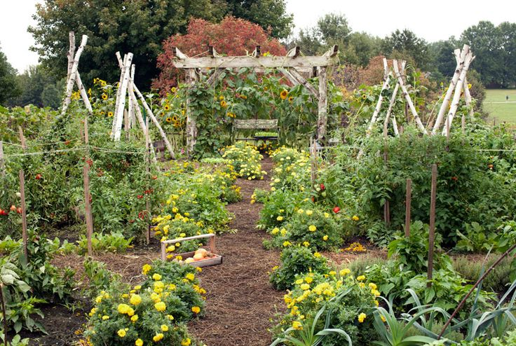 Organic Garden Design Stunning Decorating Design