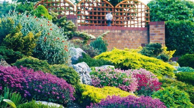 Ak sa rozhodnete pre skalku vo svojej záhrade, dôležité je,  mať na ňu dostatok miesta.