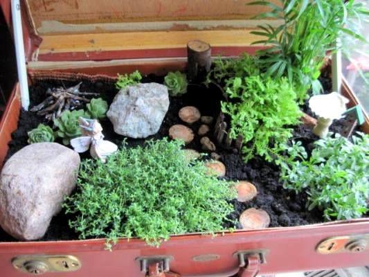 Jeanie's suitcase fairy garden