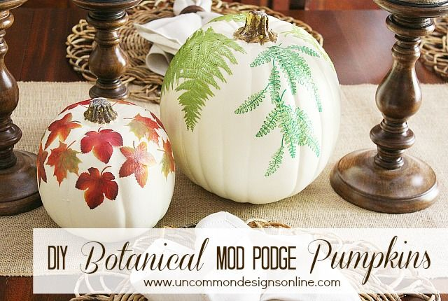 DIY Mod Podge Botanical Pumpkins
