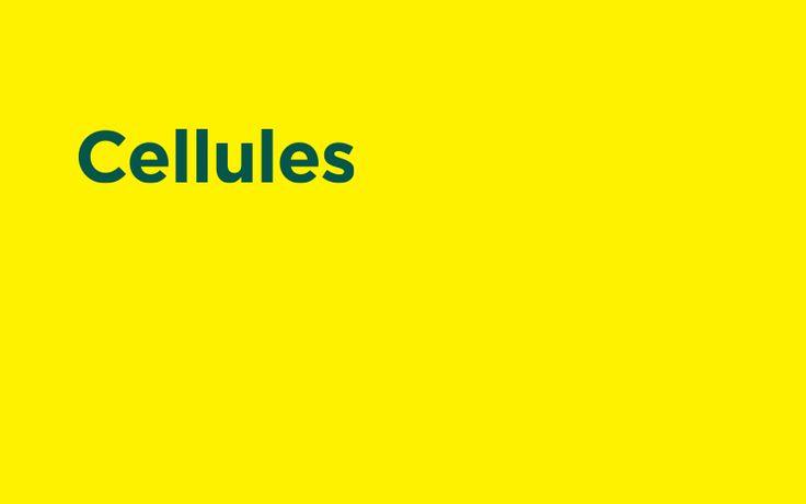 cellules- Samuel Rousselier- Gente con le idee che contano